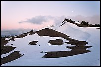 Neve on hill at dusk near Obstruction Point. Olympic National Park, Washington, USA. (color)