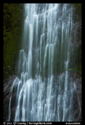 Marymere Falls close-up. Olympic National Park (color)