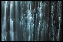 Water curtain, Marymere Fall. Olympic National Park, Washington, USA.