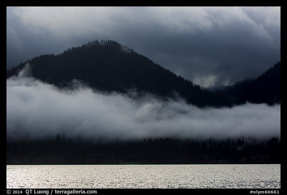 Fog hanging over shores of Lake Quinault. Olympic National Park (color)