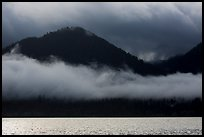 Fog hanging over shores of Lake Quinault. Olympic National Park ( color)