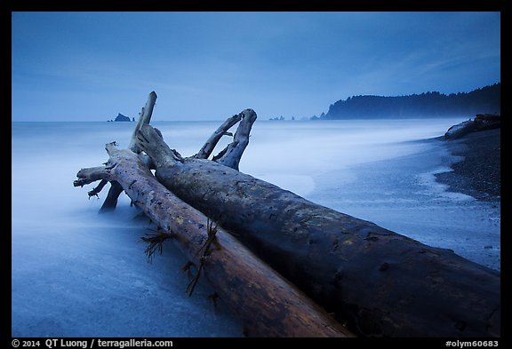 Driftwood and wave motion at dusk, Rialto Beach. Olympic National Park (color)
