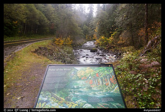 Sol Duc River interpretive sign. Olympic National Park (color)