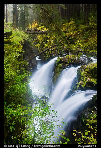 Sol Duc Falls and bridge in autumn. Olympic National Park (color)