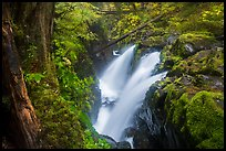 Soleduc Falls, gorge, and footbridge in autumn. Olympic National Park ( color)