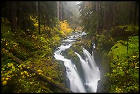 Sol Duc Falls in autumn. Olympic National Park ( color)