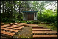 Amphitheater, Mora Campground. Olympic National Park ( color)