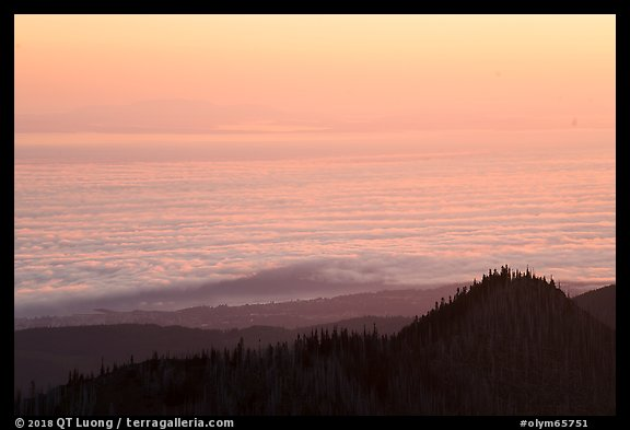 Sea of clouds above Strait of Juan de Fuca at sunrise. Olympic National Park (color)