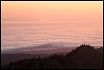 Sea of clouds above Strait of Juan de Fuca at sunrise. Olympic National Park ( color)