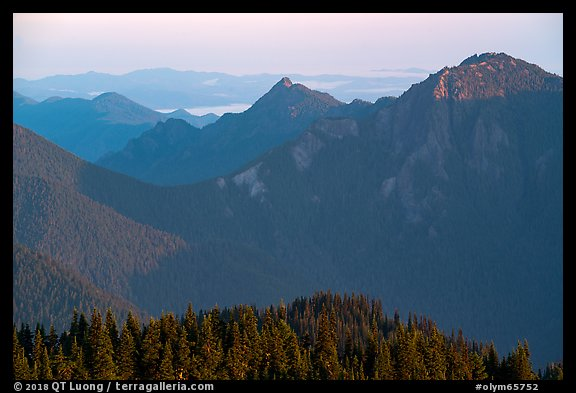 Mt Fitzhenry at sunrise. Olympic National Park (color)