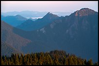Mt Fitzhenry at sunrise. Olympic National Park ( color)