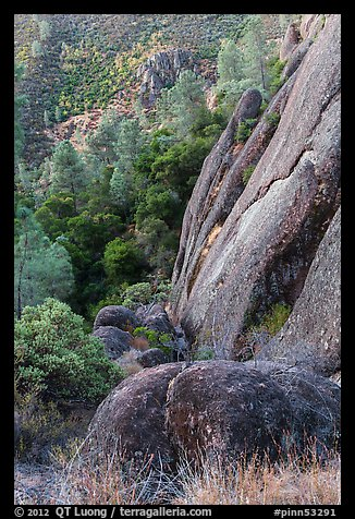 Cliff and Mediterranean chaparral. Pinnacles National Park (color)