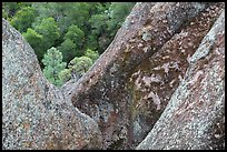 Lichen-covered volcanic rock finns. Pinnacles National Park ( color)