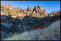Summer grasses and pinnacles, early morning. Pinnacles National Park ( color)