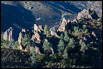 Pine trees and pinnacles. Pinnacles National Park, California, USA. (color)