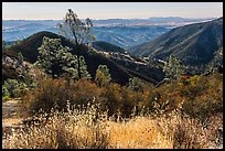 Summer grasses and rolling hills. Pinnacles National Park, California, USA. (color)