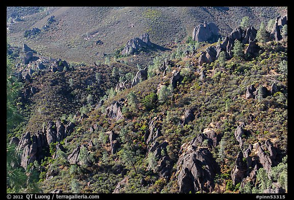 Volcanic rocks and chaparral. Pinnacles National Park (color)