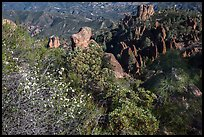 Blooms and pinnacles in spring. Pinnacles National Park, California, USA. (color)