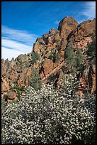 Spring blooms and high peaks from Juniper Canyon. Pinnacles National Park, California, USA.