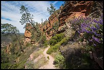 Juniper Canyon trail in spring. Pinnacles National Park, California, USA.