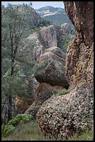 Andesite outcrops. Pinnacles National Park, California, USA. (color)