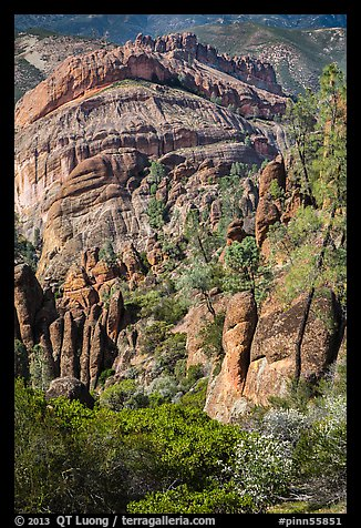 Pinnacles, trees, and Balconies cliffs. Pinnacles National Park, California, USA.