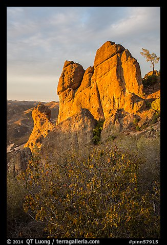 Shrubs and rock towers, autumn sunset. Pinnacles National Park (color)