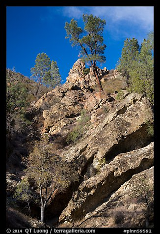 Looking up rock gully. Pinnacles National Park (color)