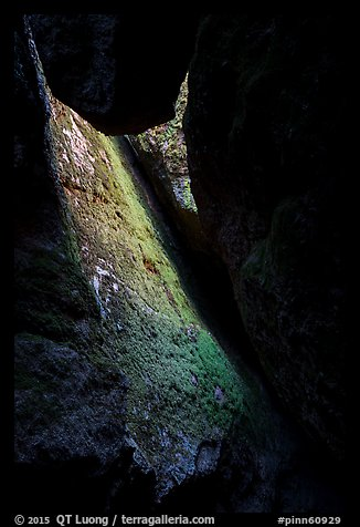 Mossy slab, Bear Gulch Lower Cave. Pinnacles National Park (color)