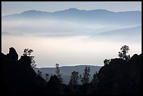 Silhouetted pinnacles and trees, mountains and valley fog. Pinnacles National Park ( color)