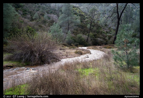 Chalone Creek in winter. Pinnacles National Park (color)