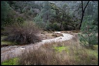 Chalone Creek in winter. Pinnacles National Park ( color)
