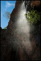 Moses Spring waterfall (fast). Pinnacles National Park ( color)