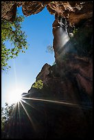 Sun and Moses Spring waterfall, looking up. Pinnacles National Park ( color)