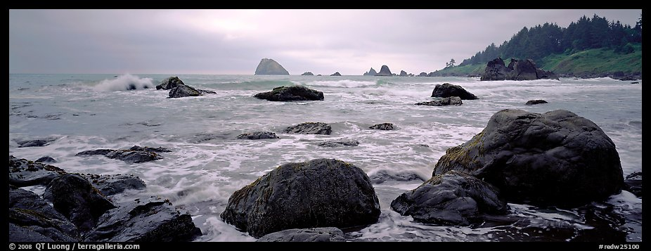 Misty seascape with boulders. Redwood National Park (color)