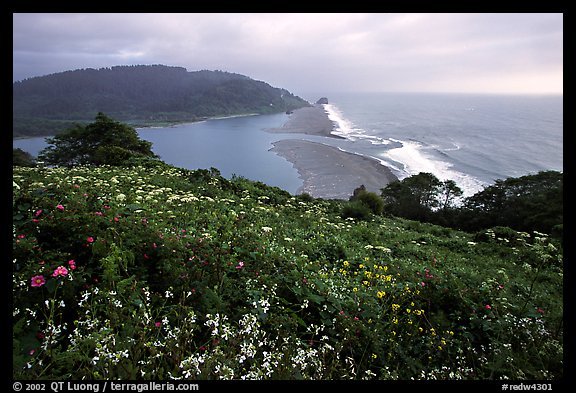 Coastline from Klamath overlook. Redwood National Park (color)