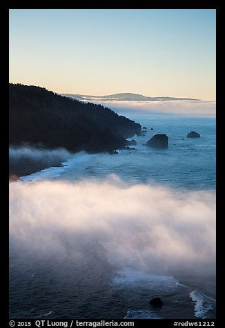 Costal clouds in early morning, Klamath River Overlook. Redwood National Park (color)