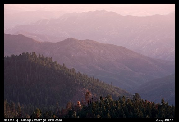 Forested ridges on western Sierra Nevada. Sequoia National Park (color)