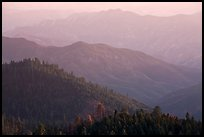 Forested ridges on western Sierra Nevada. Sequoia National Park, California, USA. (color)