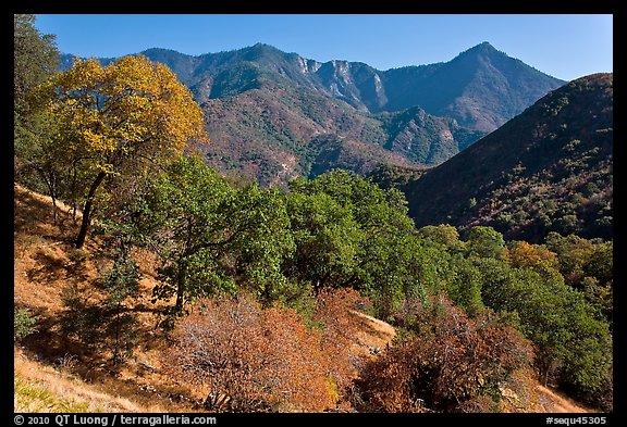 Picture Photo Sierra Nevada Western Foothills In Summer
