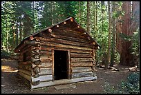 Squatters Cabin. Sequoia National Park, California, USA. (color)