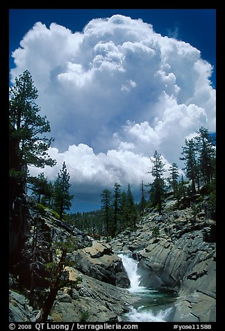 Yosemite Creek and summer afternoon thunderstorm cloud. Yosemite National Park (color)