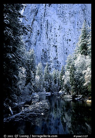 Cathedral rocks with fresh snow reflected in Merced River, early morning. Yosemite National Park (color)