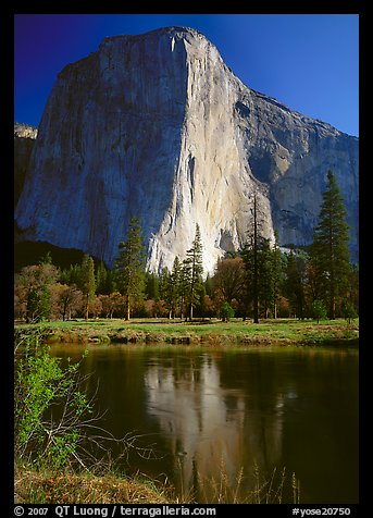 El Capitan and Merced River reflection. Yosemite National Park (color)