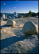 Glacial erratic boulders and Half Dome, Olmsted Point, afternoon. Yosemite National Park, California, USA. (color)
