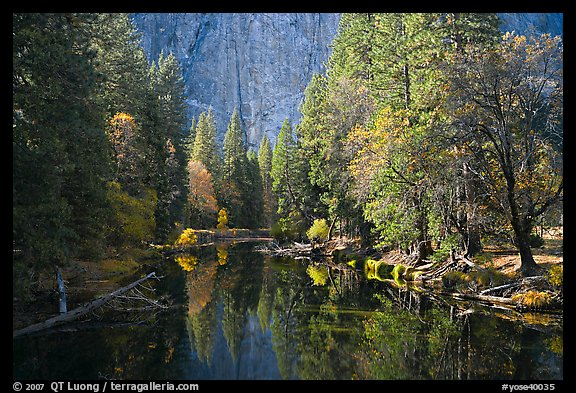 Merced River, trees, and rock wall. Yosemite National Park (color)