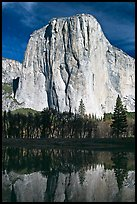 El Capitan and Merced River, morning. Yosemite National Park ( color)