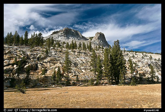 Meadow and Mount Hoffman. Yosemite National Park (color)