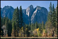 Cathedral Rocks seen from Sentinel Meadow. Yosemite National Park, California, USA. (color)