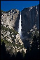 Upper Yosemite Falls in spring, early morning. Yosemite National Park ( color)